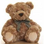 Me and My Teddy Bear - Ja i Mój Pluszowy Miś